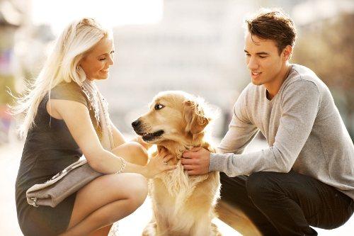Приметы мужчины, рожденного в год собаки